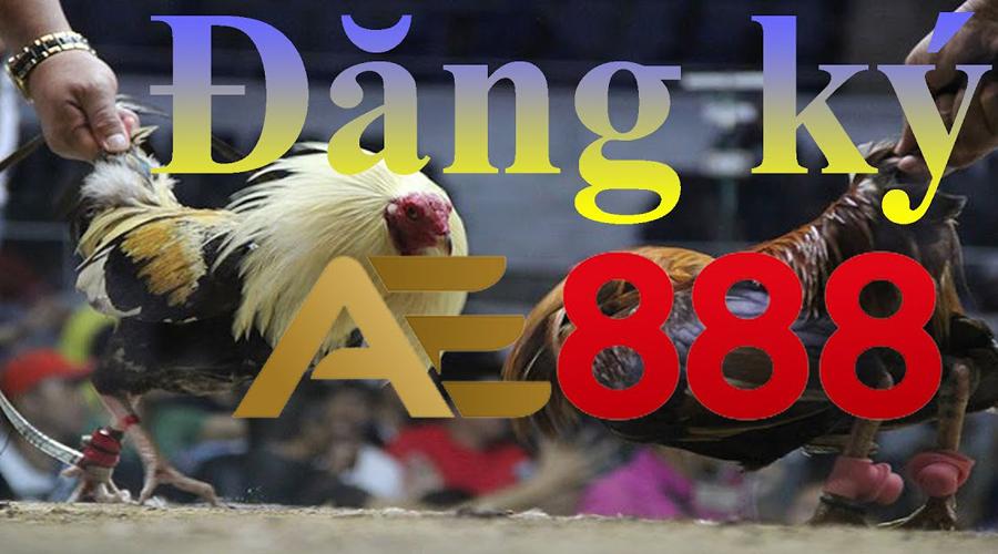 Đăng ký tài khoản đá gà trực tuyến AE888
