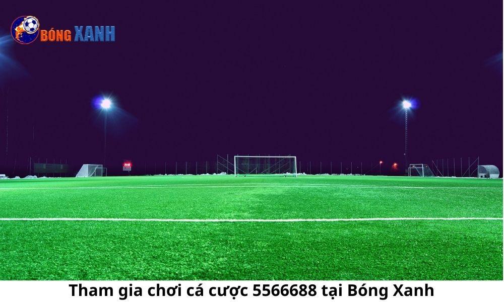Tham gia chơi cá cược 5566688 tại Bóng Xanh