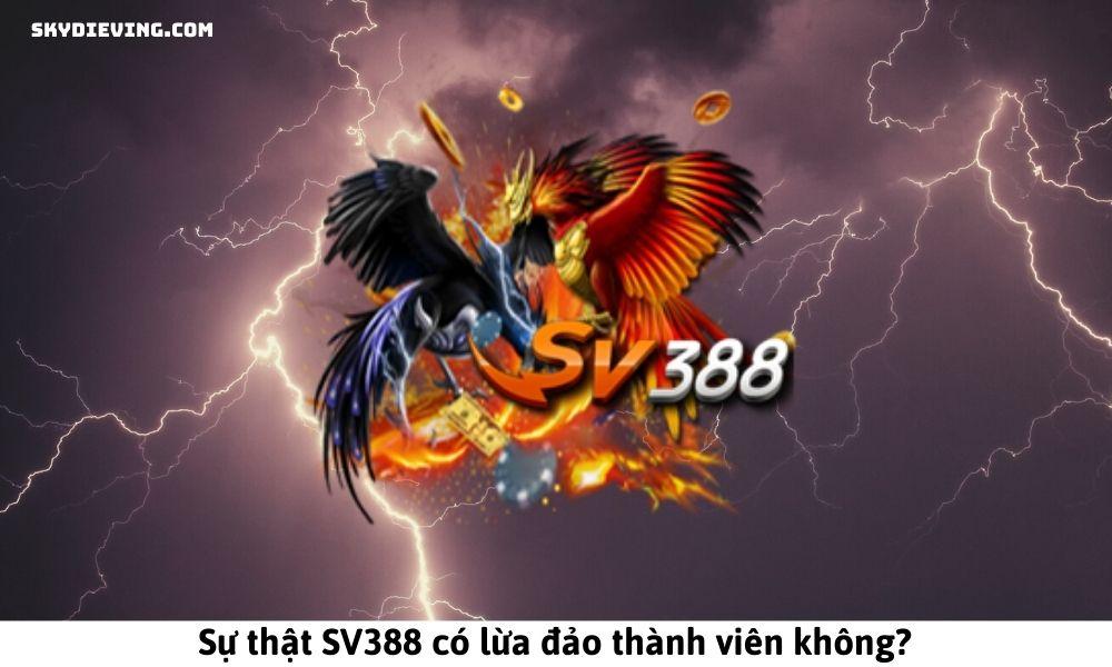 Sự thật SV388 có lừa đảo thành viên không