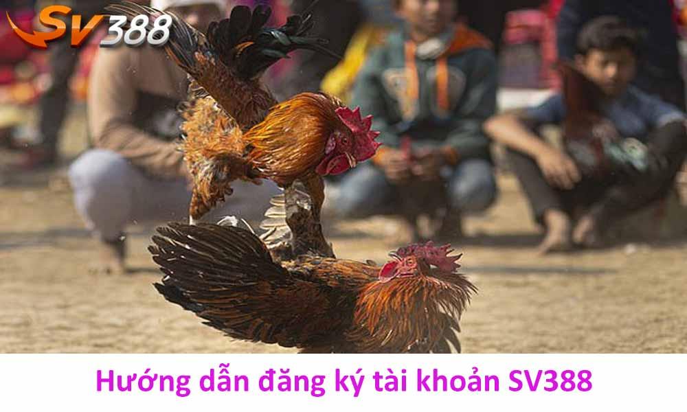 Hướng dẫn đăng ký tài khoản SV388